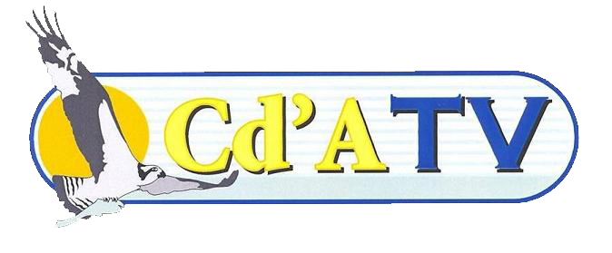 Cda sponsoring online Sponsor your